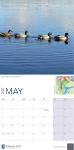 Bridgewater Worsley Woods calendar May